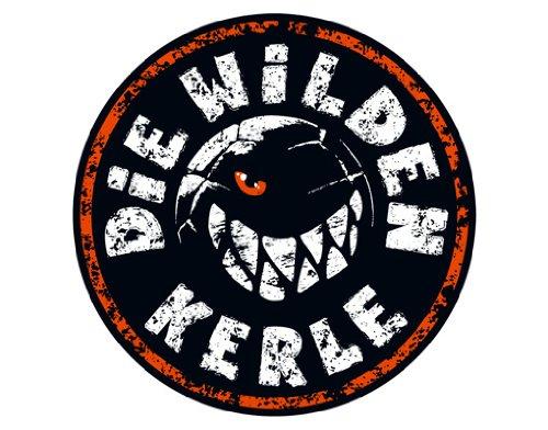 WandTattoo Die Wilden Kerle - Logo Kinderzimmer, Fußball, Serie, Spieler, Abenteuer, Junge (120x120cm)